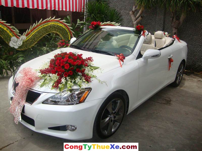 xe hoa mui trần