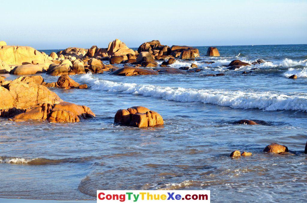thuê xe đi Cổ Thạch – Tuy Phong