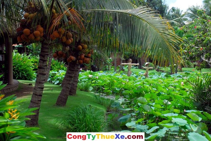 Cù Lao Tân Phong Tiền Giang
