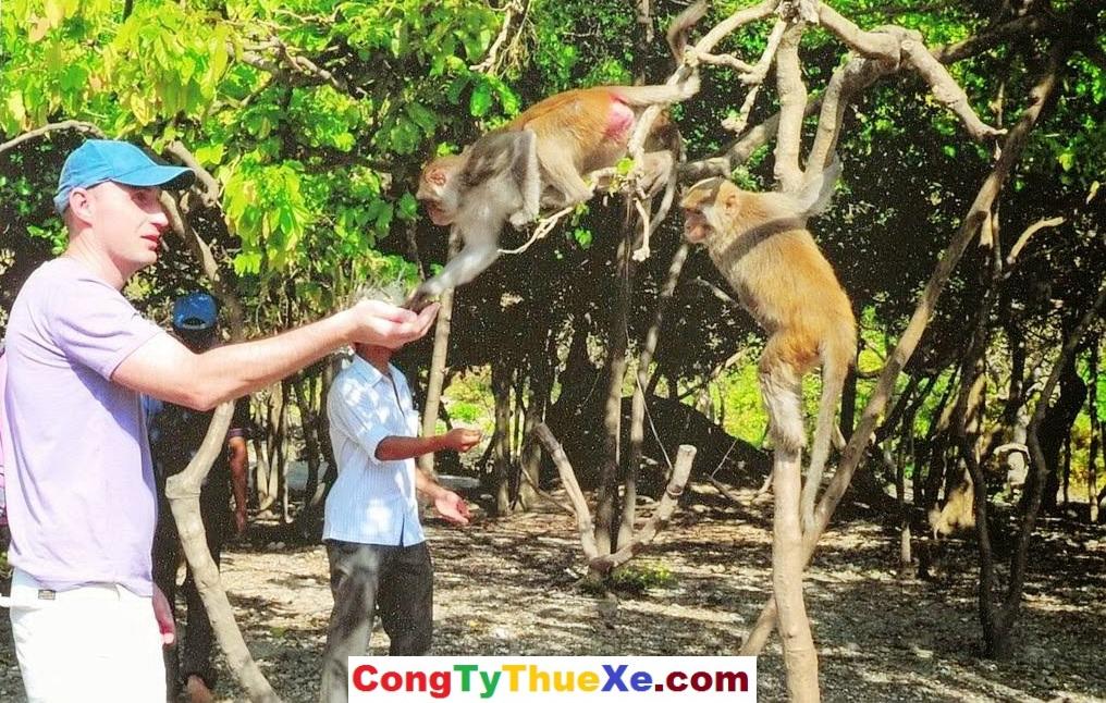 thuê xe đi Nha Trang Đào Khỉ (3)