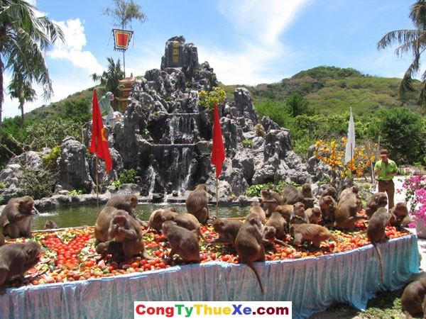 thuê xe đi Nha Trang Đào Khỉ