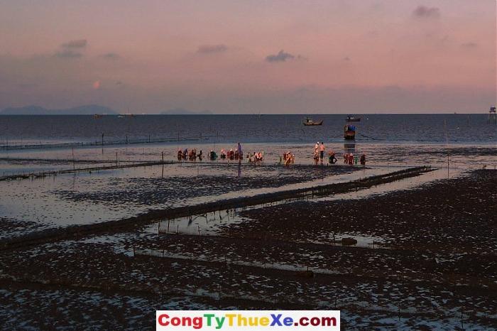 Thuê xe đi biển Tân Thành (2)