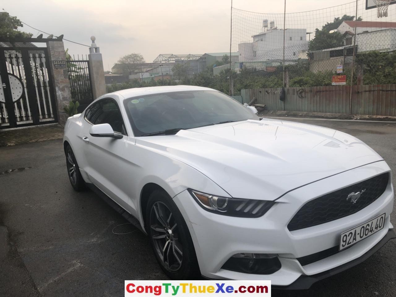 Thuê xe hoa Ford Mustang (6)