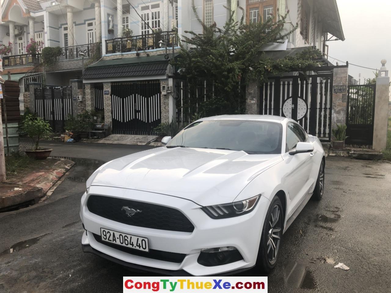 Thuê xe hoa Ford Mustang