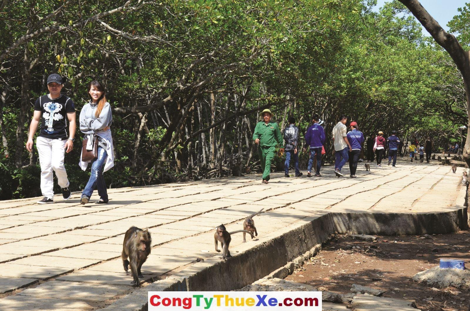 thuê xe 7 chỗ đi Đảo Khỉ Cần Giờ (1)