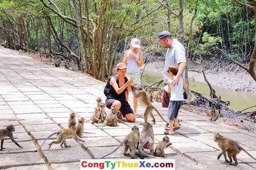 thuê xe 7 chỗ đi Đảo Khỉ Cần Giờ (2)
